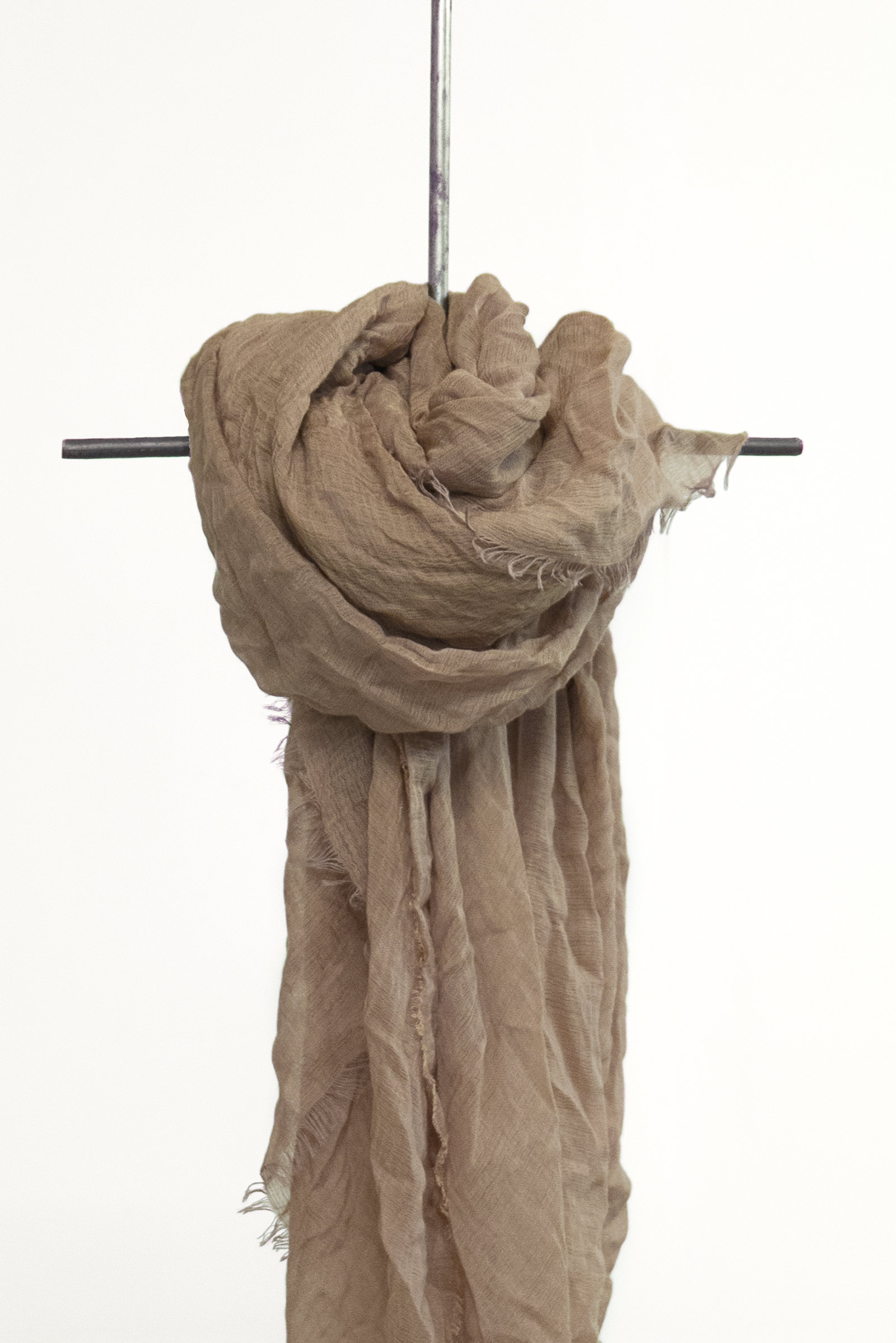 GIUSEPPE, TEA ROSE FOULARD - Cortana